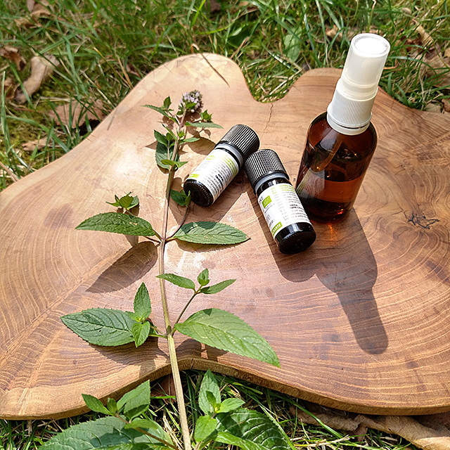 essential oil natural refreshing mist diy recipe